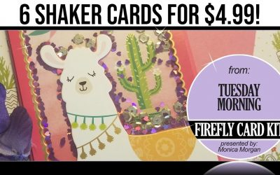 How to Make 6 Shaker Cards for $4.99