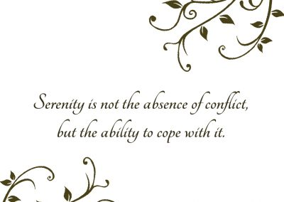Serenity is not the absence of conflict, but the ability to cop