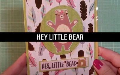 Hey Little Bear